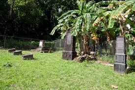 Image result for German Cemetery, pohnpei